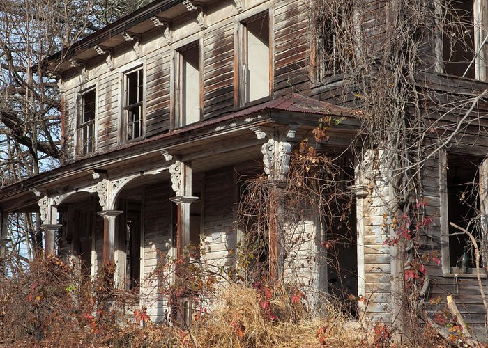 Weed Greeting Card featuring the photograph Abandoned Dilapidated Homestead by John Stephens