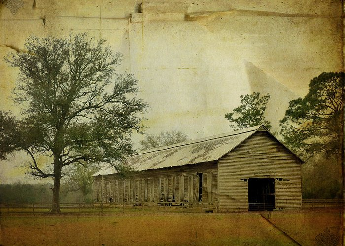 Old Greeting Card featuring the photograph Abandoned Tobacco Barn by Carla Parris