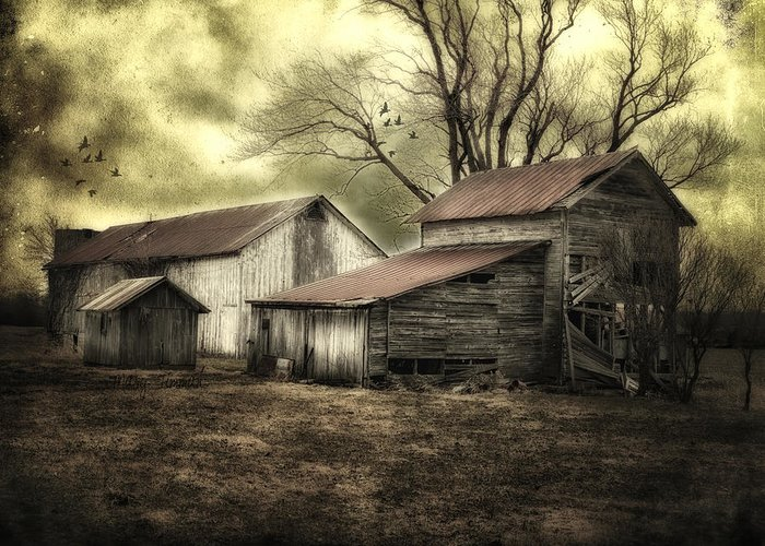 Barns Greeting Card featuring the photograph After The Storm by Mary Timman