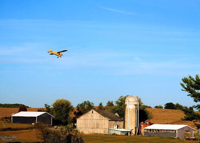 Airplane Greeting Card featuring the photograph Afternoon Flight by Darlene Bell