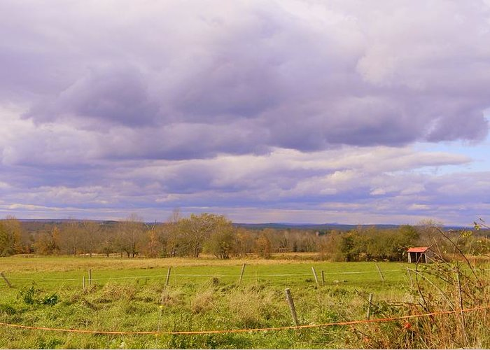 Fields Greeting Card featuring the photograph Afternoon In The Country by Katina Cote