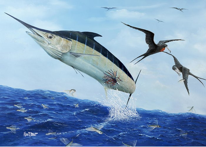 Blue Marlin Greeting Card featuring the painting Airbourne by Kevin Brant