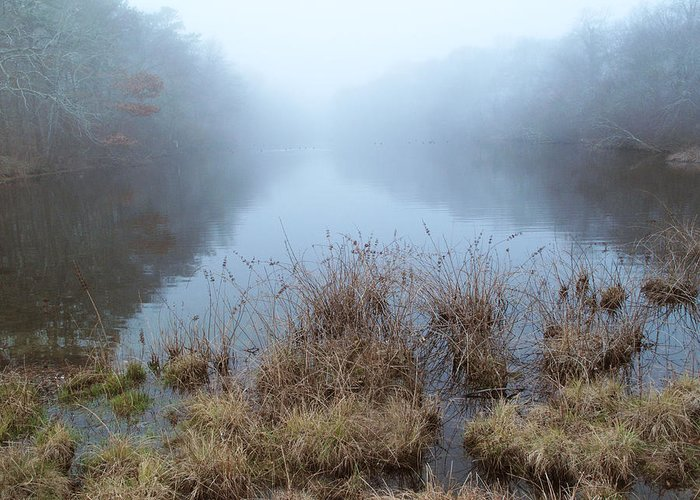 Alcotts Pond Greeting Card featuring the photograph Alcotts Pond In Fog by Steve Gravano