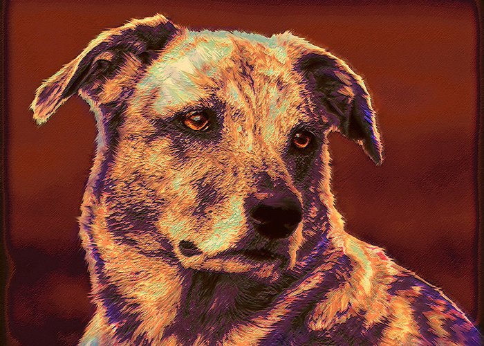 Mutt Greeting Card featuring the digital art All American Mutt 2 by Jane Schnetlage