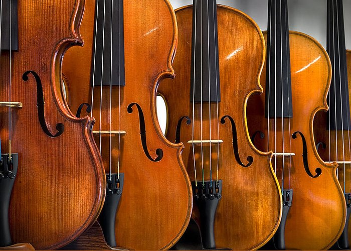 Violin Greeting Card featuring the photograph All In A Row by Endre Balogh