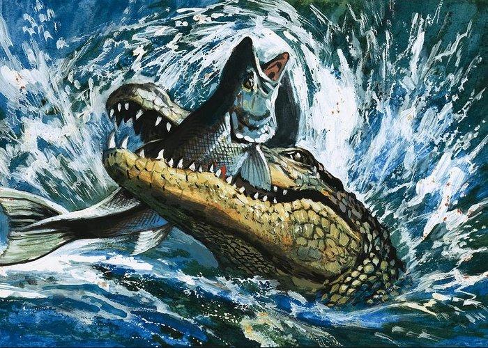 Alligator Greeting Cards
