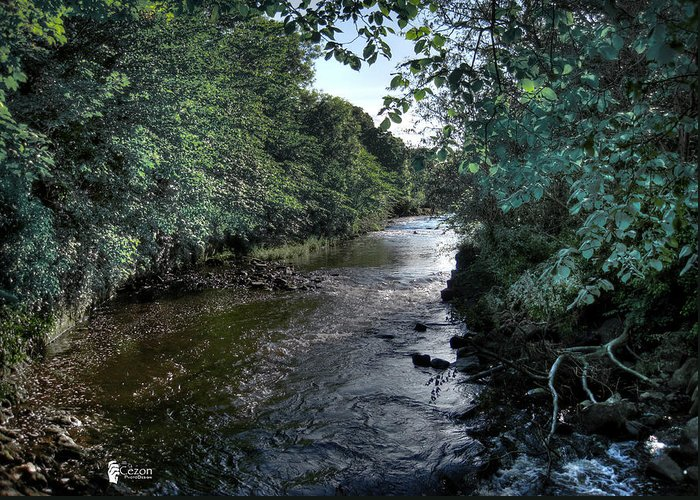 River Greeting Card featuring the photograph Almond River Cramond by Jose Luis Cezon Garcia