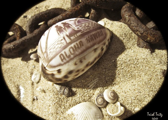 Sand Greeting Card featuring the photograph Aloha by Trish Tritz
