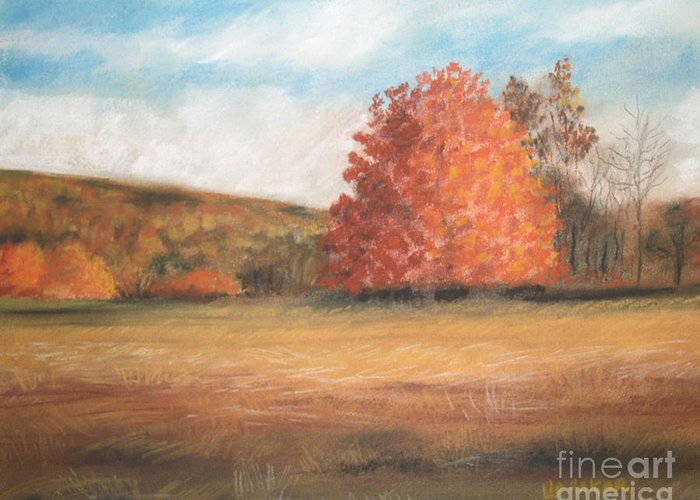 Holden Arboretum Greeting Card featuring the drawing Amid The Tranquil Presence Of Change by Lisa Urankar