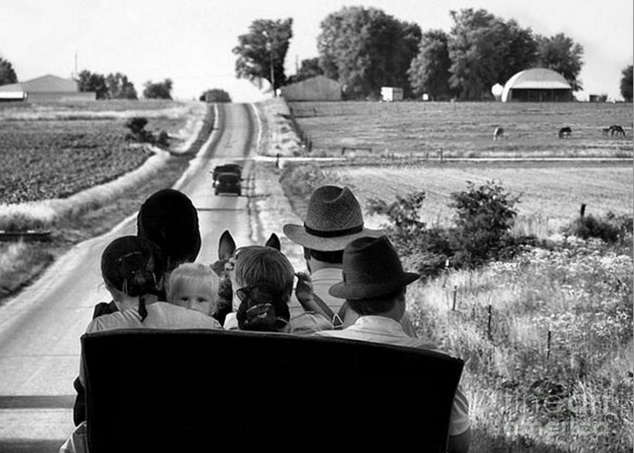 Amish Greeting Card featuring the photograph Amish Family Outing by Julie Dant
