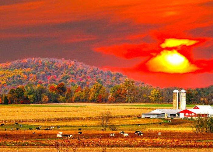 Red Sunset Amish Farm Greeting Card featuring the photograph Amish Farm Sundown by Randall Branham