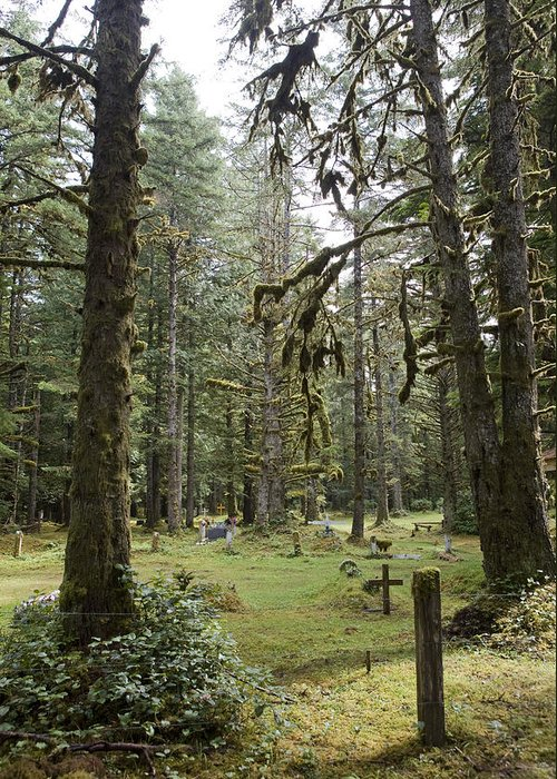 Queen Charlotte Islands Greeting Card featuring the photograph An Old Cemetary In A Forest by Taylor S. Kennedy
