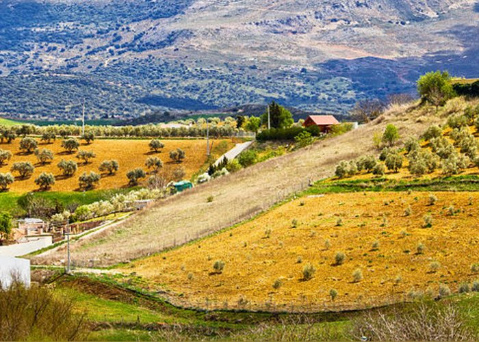 Andalucia Greeting Card featuring the photograph Andalusia Countryside Panorama by Artur Bogacki