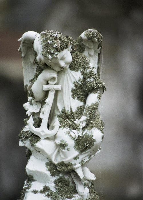Angel 2 Greeting Card featuring the photograph Angel 2 by Learne Palmer