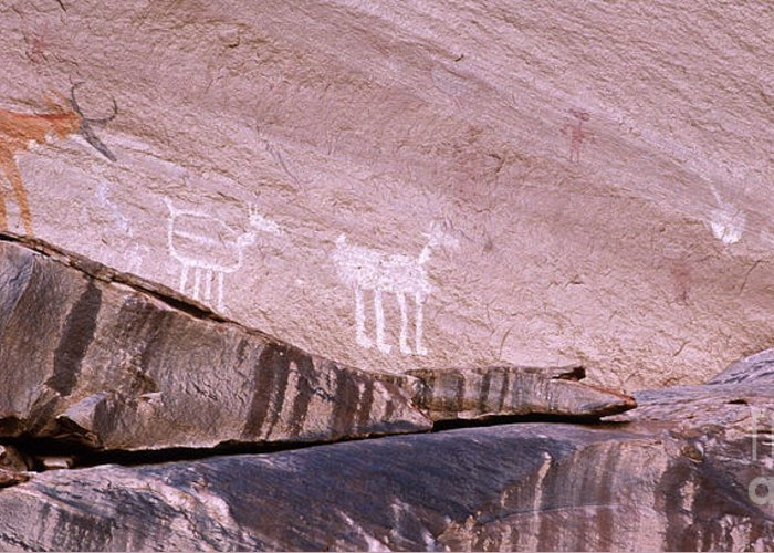Antelope House Ruin Greeting Card featuring the photograph Antelope House Petroglyphs by Bob Christopher
