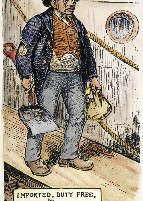 1888 Greeting Card featuring the photograph Anti-immigrant Cartoon by Granger