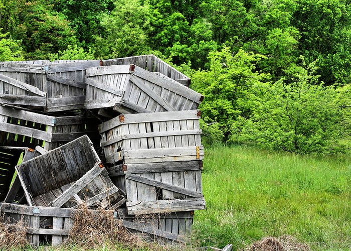 Apple Crates Greeting Card featuring the photograph Apple Crates by JC Findley