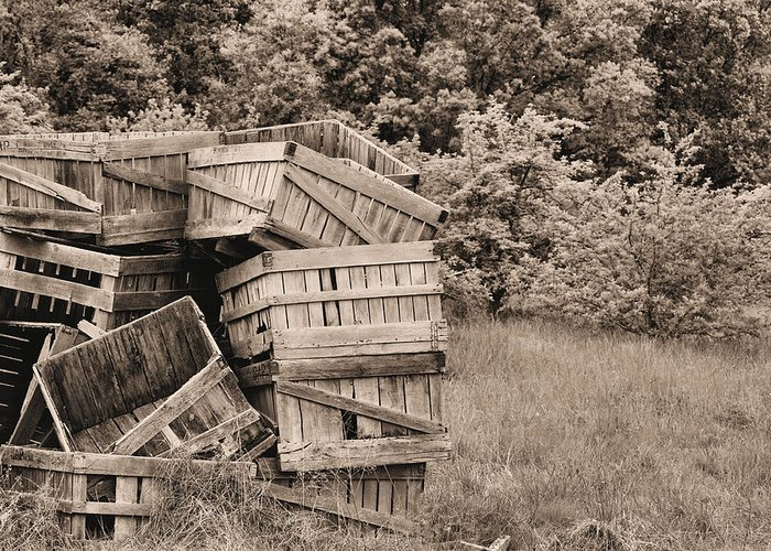 Apple Crates Greeting Card featuring the photograph Apple Crates Sepia by JC Findley