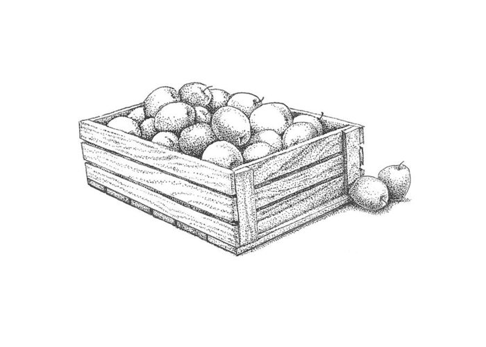 Apple Crates Drawings Greeting Cards