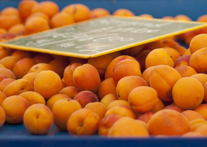 Apricot Greeting Card featuring the photograph Apricots by Georgia Fowler