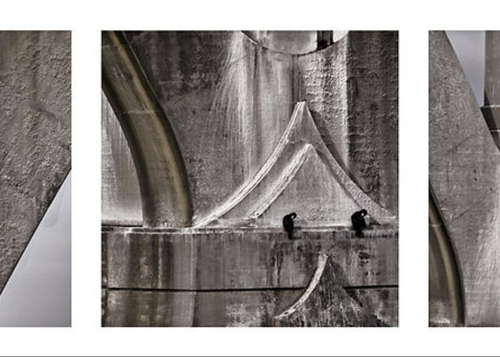 Architecture Greeting Card featuring the photograph Architectural Detail Triptych by Carol Leigh