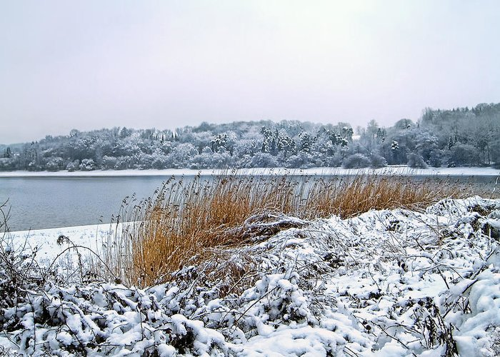 Snow Greeting Card featuring the photograph Ardingly Reservoir - Winter Snowy Scene by Ollie Relfe