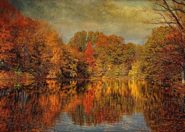 Autumn Greeting Card featuring the photograph Autumn - Landscape - Tamaques Park - Autumn In Westfield Nj by Mike Savad