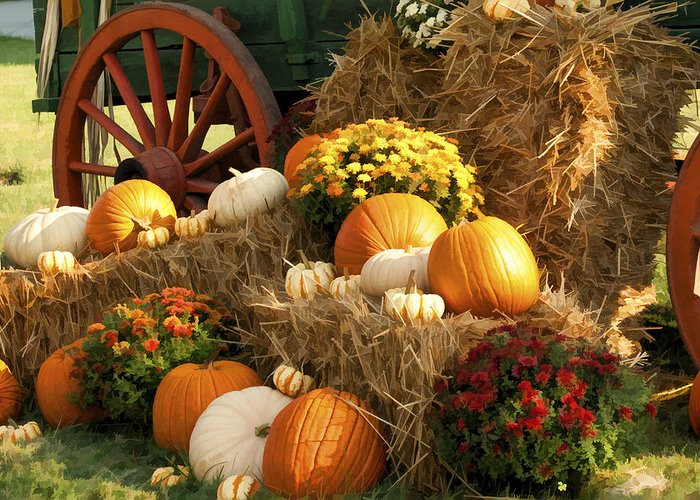 Buzz Greeting Card featuring the photograph Autumn Bounty by Kathy Clark