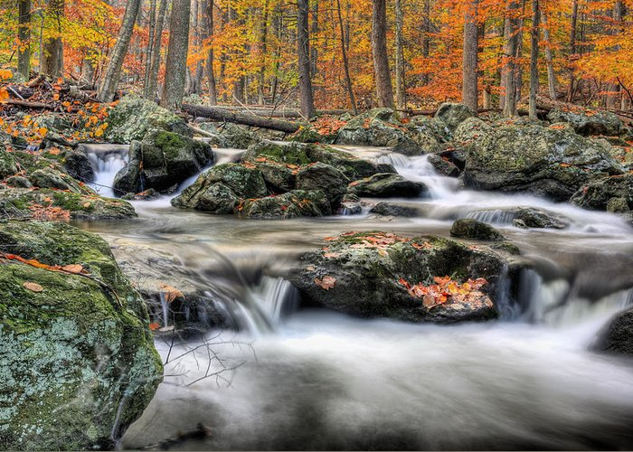 Cunningham Falls Greeting Card featuring the photograph Autumn Dreams by JC Findley
