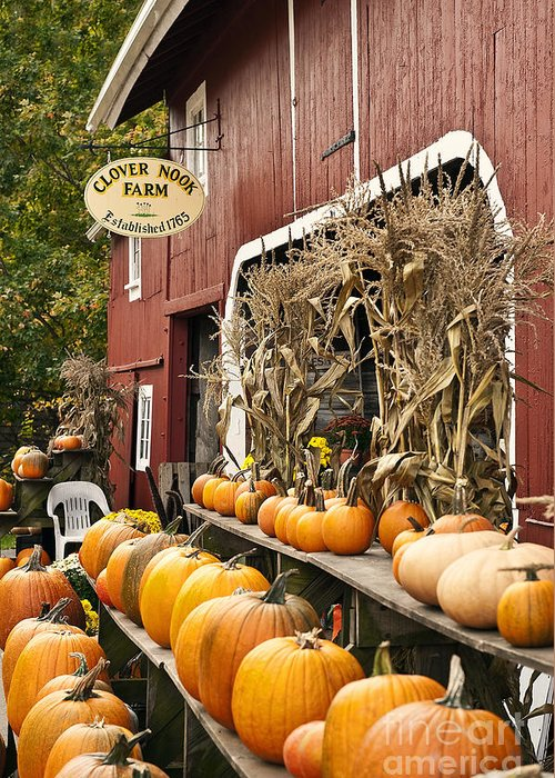 Connecticut Greeting Card featuring the photograph Autumn Farm Stand by John Greim