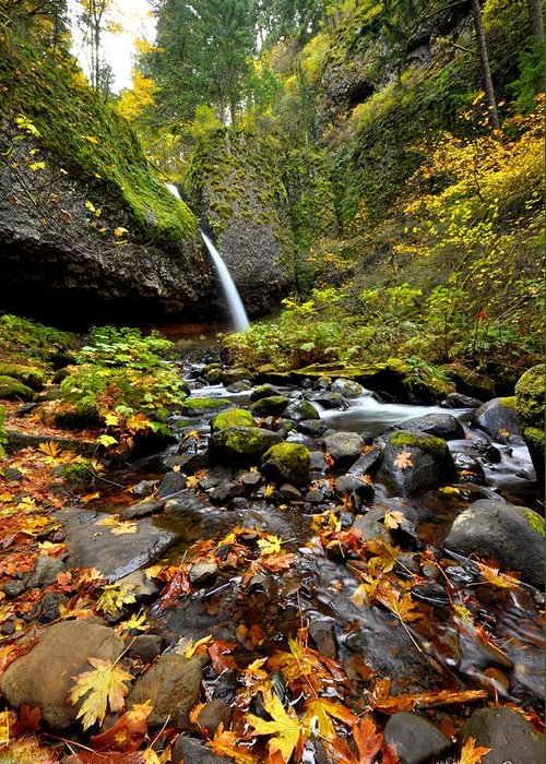 Horsetail Falls Greeting Card featuring the photograph Autumn Horsetail by Noah Cole