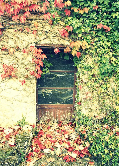 Abandoned House Greeting Card featuring the photograph Autumn In France by Georgia Fowler