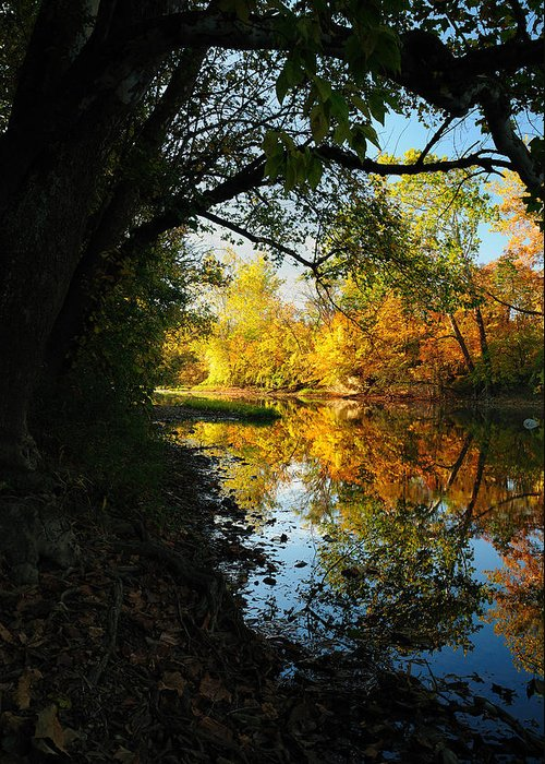 Fall Greeting Card featuring the photograph Autumn In Ohio by Dick Wood