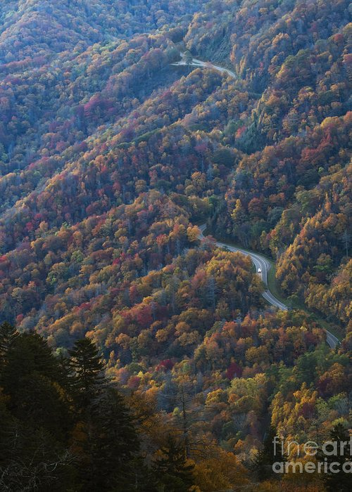 Smoky Mountains Greeting Card featuring the photograph Autumn In The Smoky Mountains by Dennis Hedberg