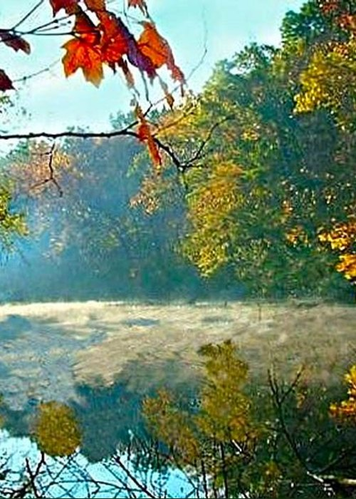 White River Scene Greeting Card featuring the photograph Autumn On The White River I by Julie Dant