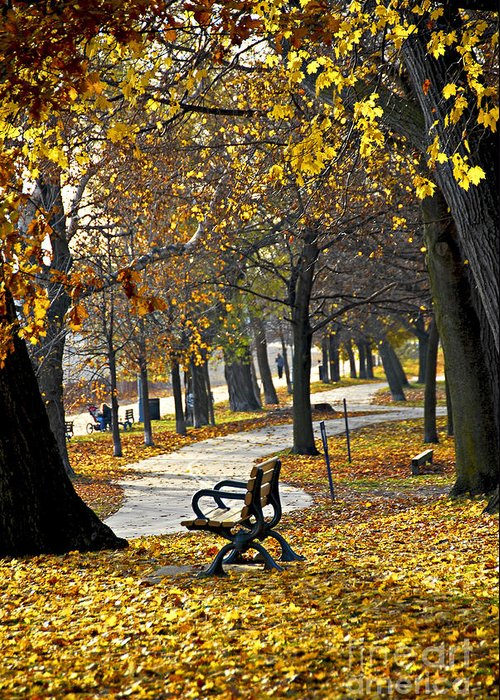 Park Greeting Card featuring the photograph Autumn Park In Toronto by Elena Elisseeva