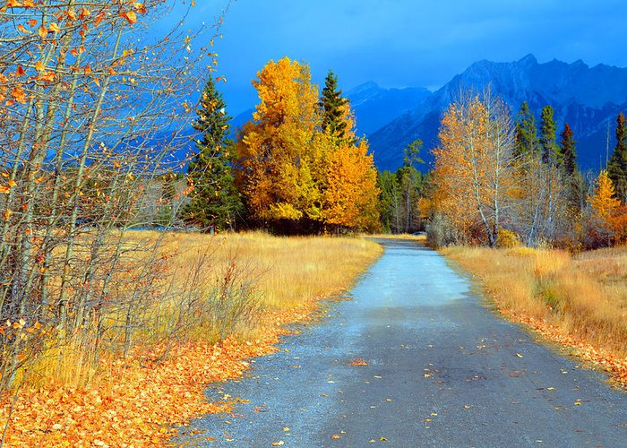 Canmore Greeting Card featuring the photograph Autumn Perspective by Tara Turner