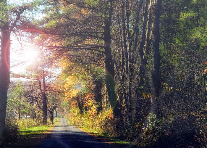 Fall Greeting Card featuring the photograph Autumn Road by Mark Papke