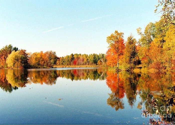 Lake Greeting Card featuring the photograph Autumn Splendor by Crissy Sherman