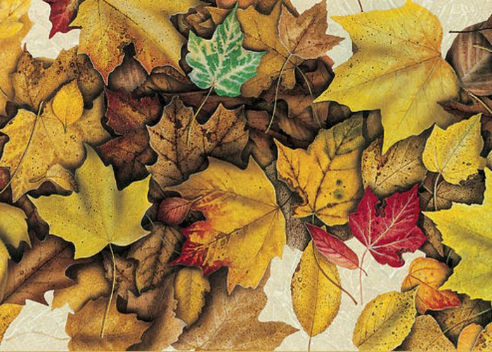 Jon Q Wright Greeting Card featuring the painting Autumn Splendor by JQ Licensing