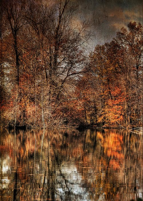 Season Greeting Card featuring the photograph Autumn's End by Paul Ward