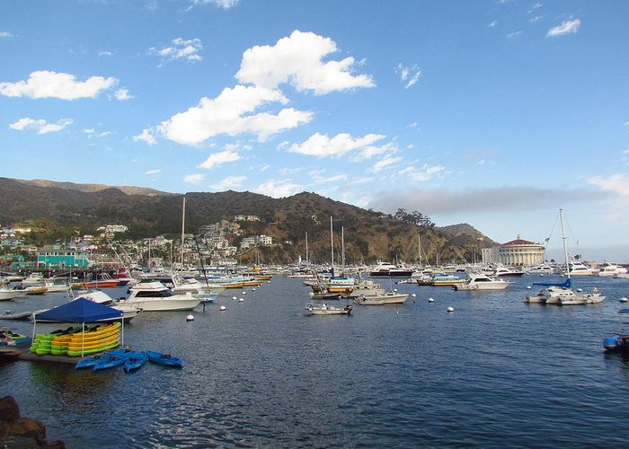 Avalon Greeting Card featuring the photograph Avalon Bay Catalina Island by Tony and Kristi Middleton