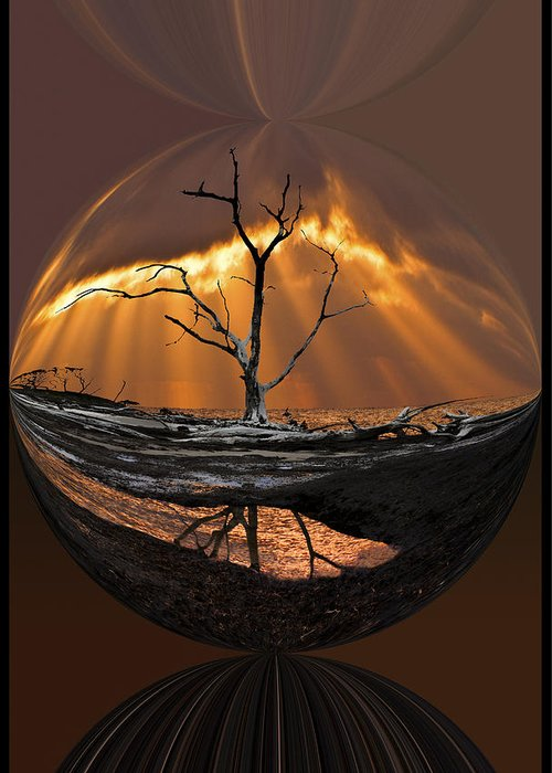 Clouds Greeting Card featuring the photograph Awakening by Debra and Dave Vanderlaan