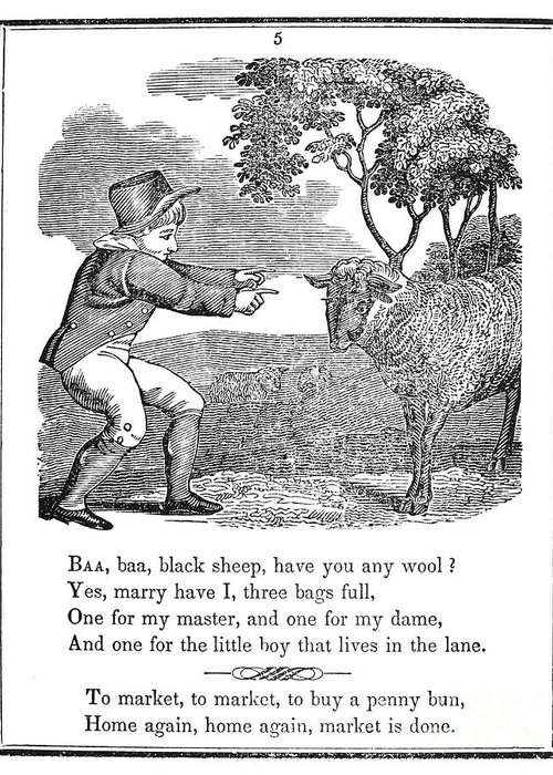 1833 Greeting Card featuring the photograph Baa, Baa, Black Sheep, 1833 by Granger