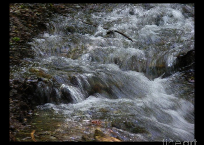 Wet Greeting Card featuring the photograph Babbling Brook by Attila Jacob Ferenczi