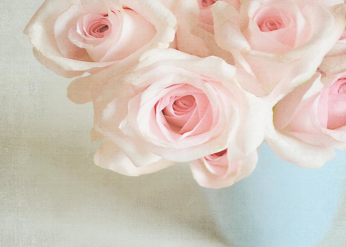 Roses Greeting Card featuring the photograph Baby Pink Roses by Lyn Randle