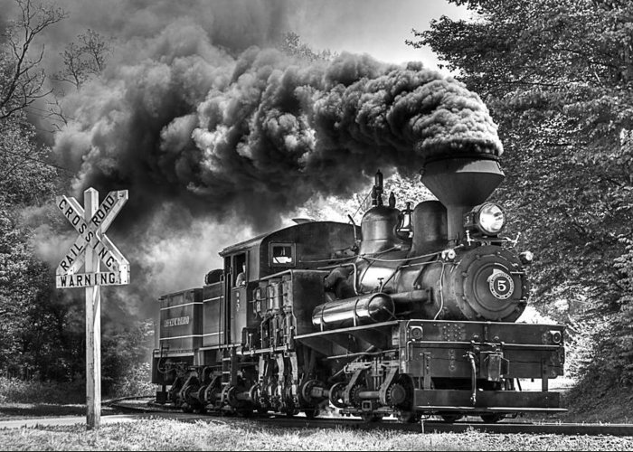 Locomotive cass Scenic Railroad west Virginia Scenic Rural Lumber Timber Cass steam Engines steam Locomotive Railroad Railway Shay Greeting Card featuring the photograph Back Mountain Road Crossing by Tom Steele