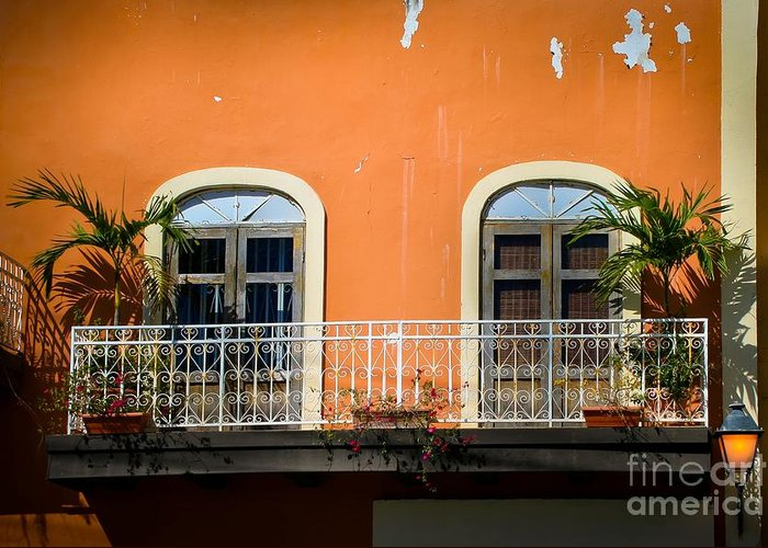 Window Greeting Card featuring the photograph Balcony With Palms by Perry Webster