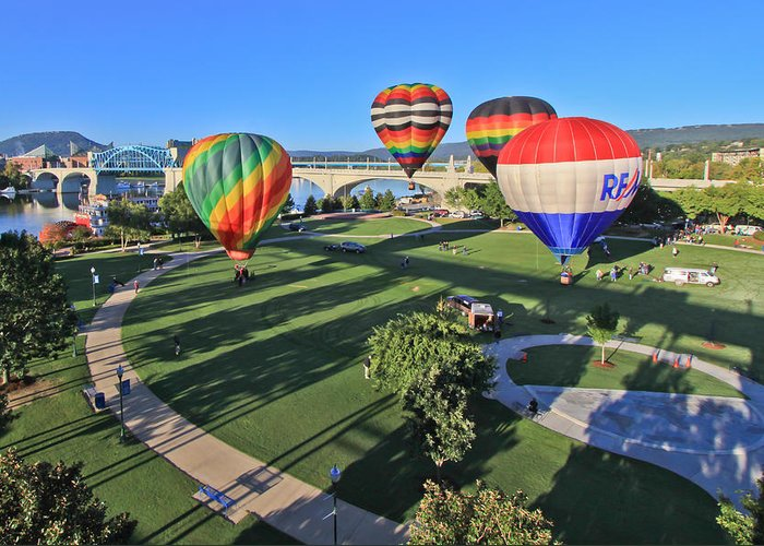 Balloons Greeting Card featuring the photograph Balloons In Coolidge Park by Tom and Pat Cory