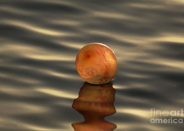 Nature Greeting Card featuring the photograph Balloons On The Water by Odon Czintos